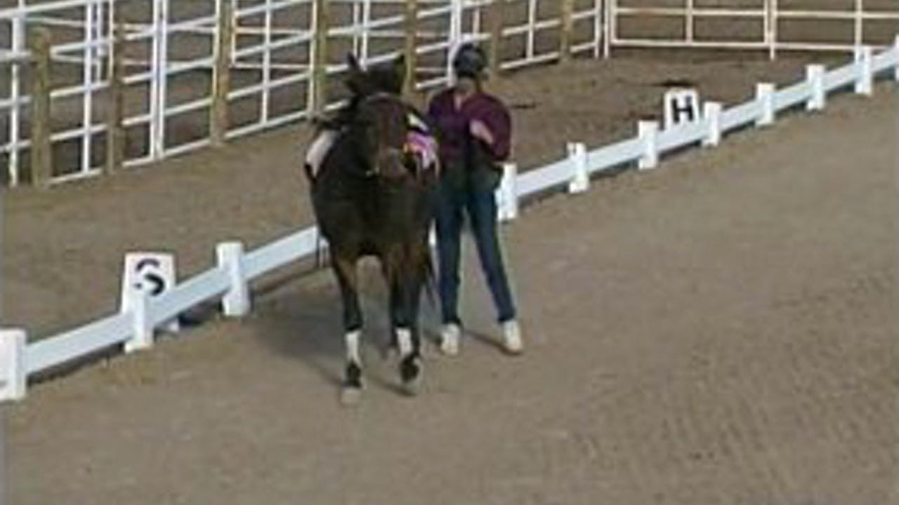 Episode 06 - Basic Foundation for Saddle I