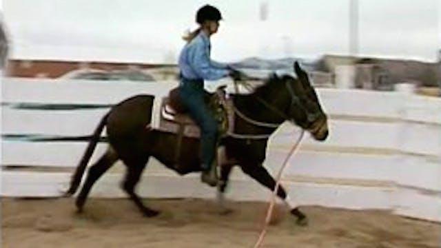 Episode 07 - Basic Foundation for Saddle II