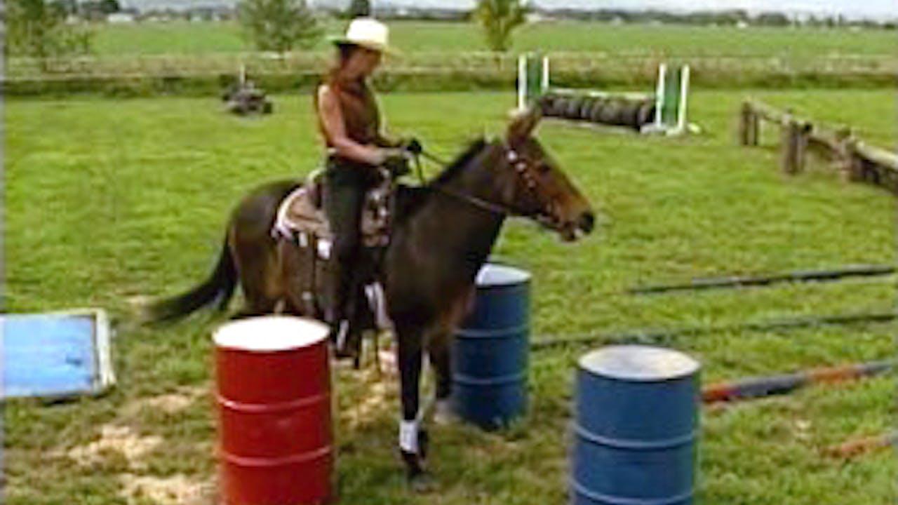 Episode 10 - Intermediate Saddle Training II