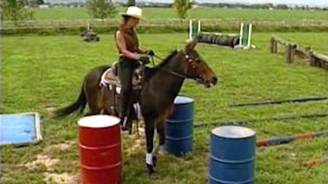 Episode 10 - Intermediate Saddle Training II