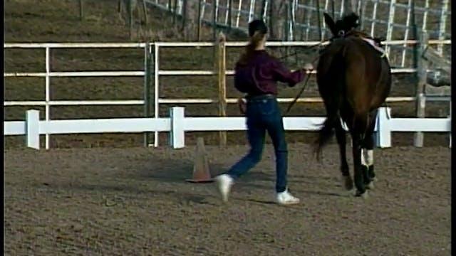 Basic Foundation for Saddle 1