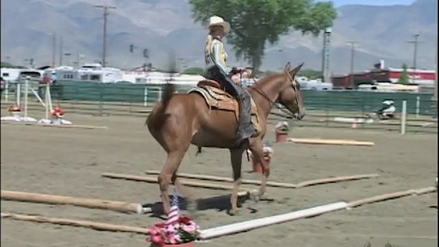 Intermediate Saddle Training 1