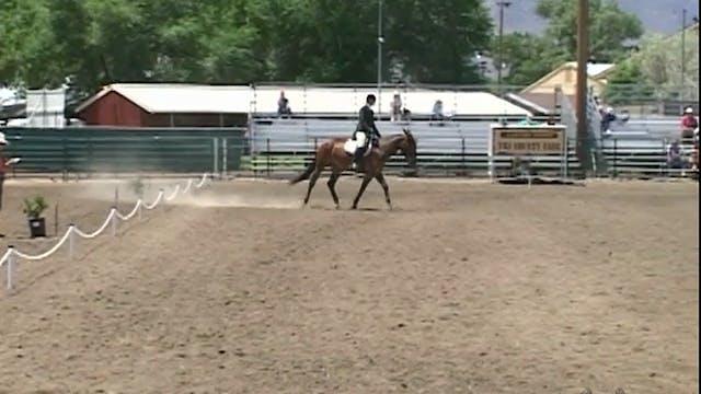 Advanced Saddle Training 1