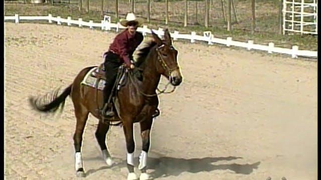 Advanced Saddle Training 2