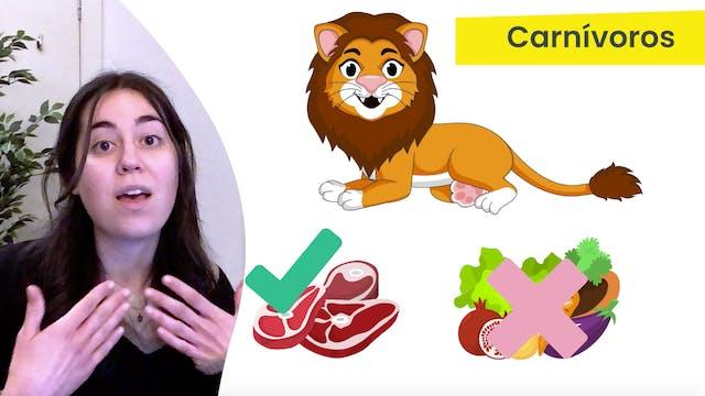 2ºPrim. CCNN. Animales: omnívoros, ca...