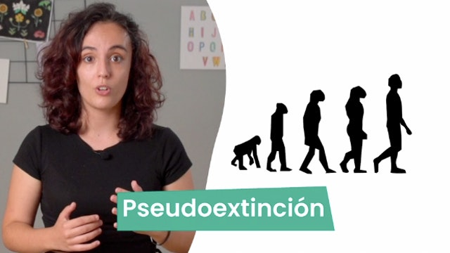 5ºPrim. CCNN. Causas de extinción de especies. Vídeo