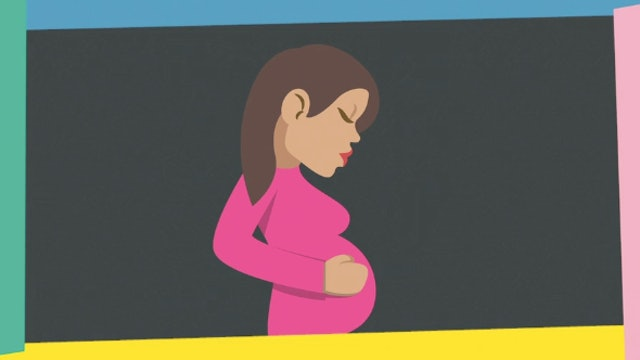 4ºPrim. CCNN. Fecundación, desarrollo embrionario y parto. Vídeo