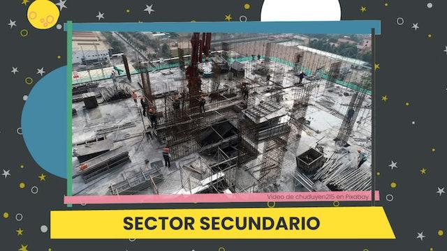 5ºPrim. CCSS. Producto y sector