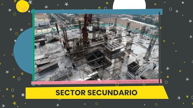5ºPrim. CCSS. Producto y sector. Vídeo Parte 2