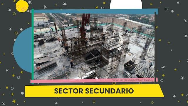 5ºPrim. CCSS. Producto y sector. Víde...