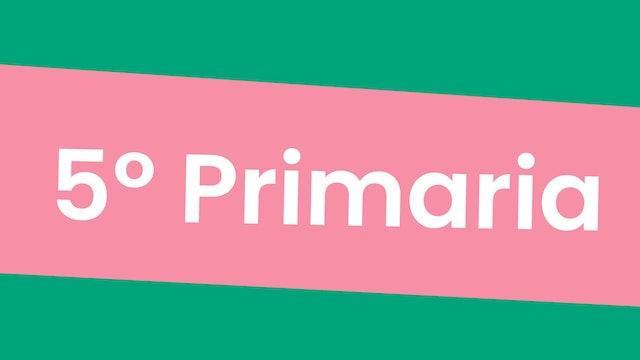 5º Primaria