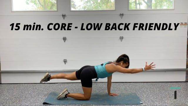 15 min. CORE - Low back friendly