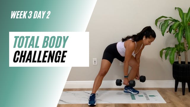 Week 3 day 2 of the Total Body challenge