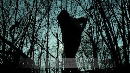 Transparent Film Festival Video