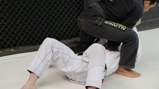Low Kick Defense [BJJ-01-01-06]