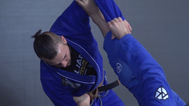 Feet on the Hip and Biceps Sweep #2 [BJJ-04-04-03]