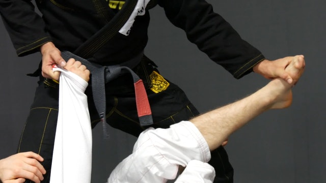 Step Over the Head Pass [BJJ-03-07-02]