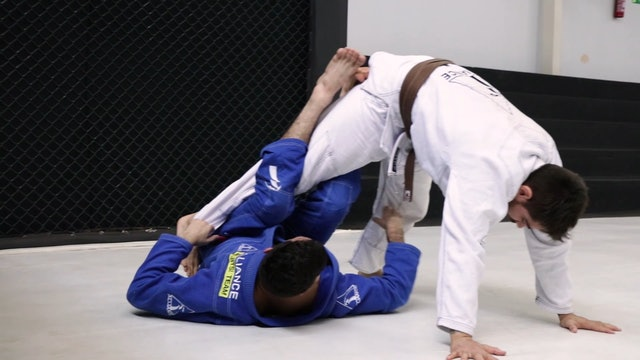 Waiter Sweep to Ankle Look [BJJ-05-02-03]