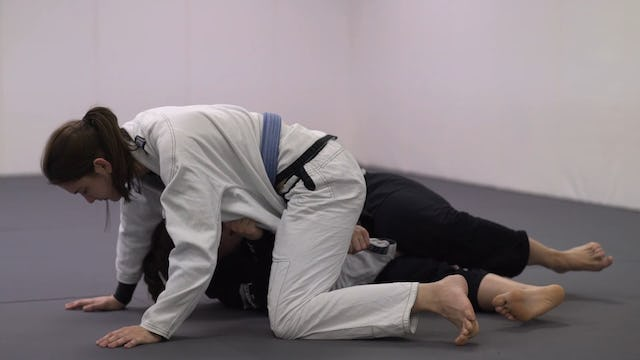 Recovering To DLR Guard [BJJ-04-03-27]