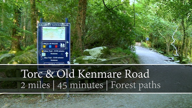 Torc & Old Kenmare Road, Killarney National Park, County Kerry