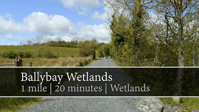 Ballybay Wetlands, Ballybay, County Monnaghan