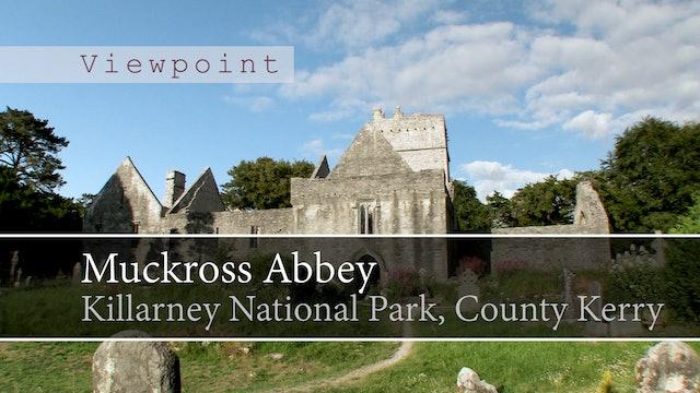 Muckross Abbey, Killarney National Park, County Kerry