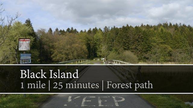 Black Island, Castleblayney, County M...
