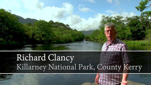 Richard Clancy, Killarney National Park, County Kerry
