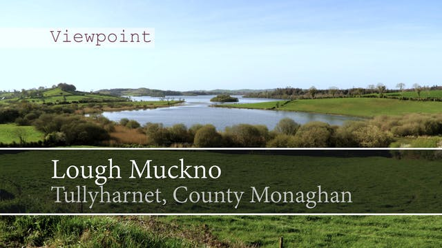 Lough Muckno, Tullyharnet, County Mon...