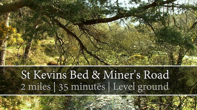 St Kevin's Bed & Miner's Road, Glendalough, County Wicklow