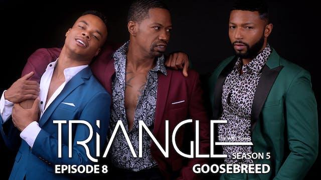 "TRIANGLE Season 5 Episode 8 ""Goosebreed"""