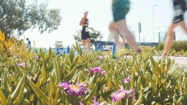 Gold Coast Aquathlon to kick off the ...