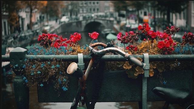 Amsterdam Retreat 2016