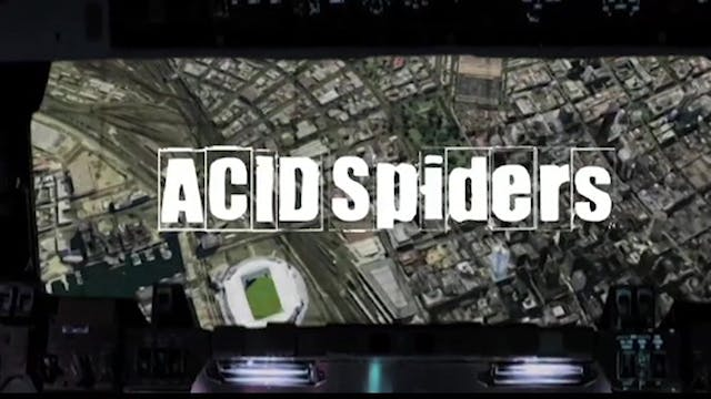 Acid Spiders