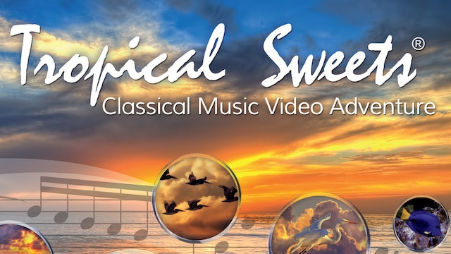 VHX.tv The Tropical Sweets® Classical Music Video Adventure 25th Anniversary Digital Debut