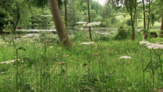 Alan's Garden Secrets: 18th Century