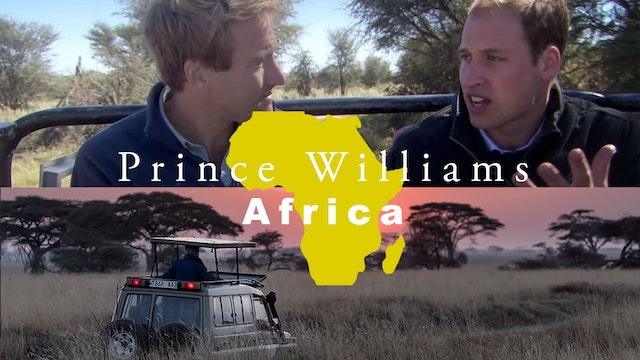Prince William's Africa