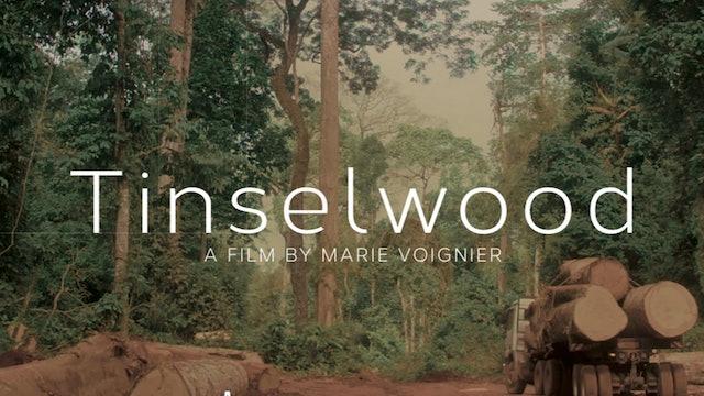 Berlinale Press Release - Tinselwood