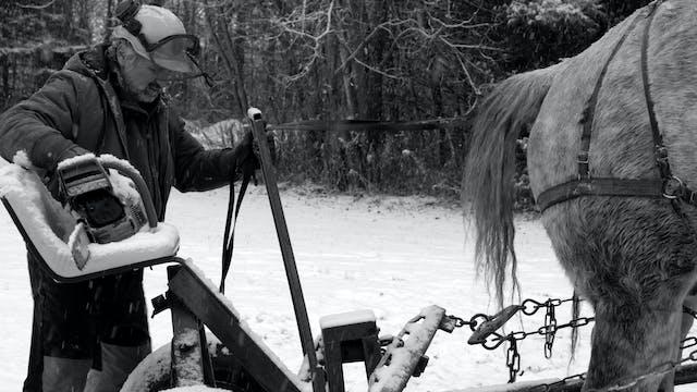 Workhorse - Trailer