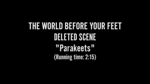 Parakeets - Deleted Scene