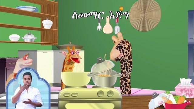 አውሮፕላኗ ዝንብ | Food Safety