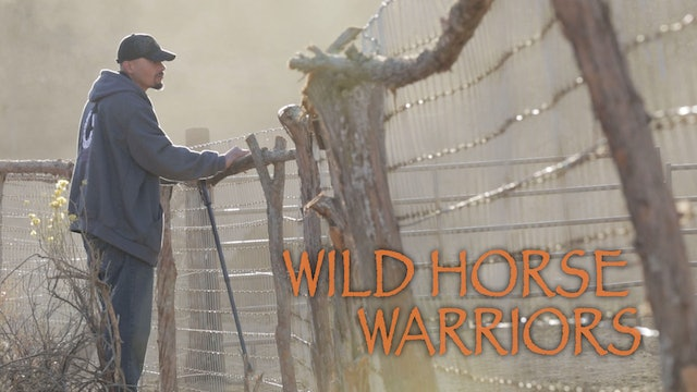 Wild Horse Warriors