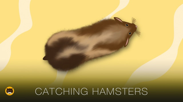 Cat Games - Catching Hamsters