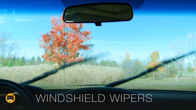 Cat TV - Windshield Wipers