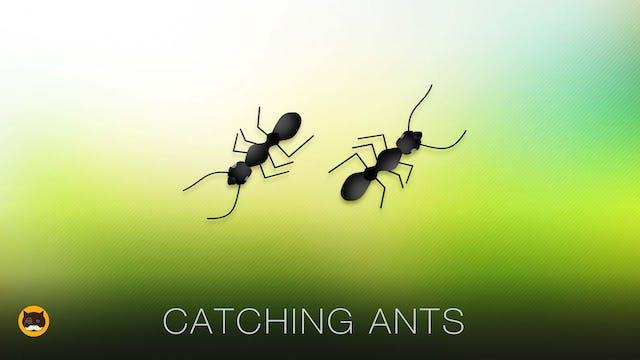 Cat Game on Screen - Catching Ants
