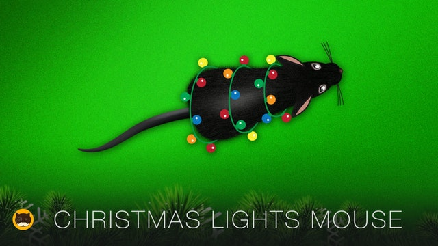 Cat Games - Christmas Lights Mouse