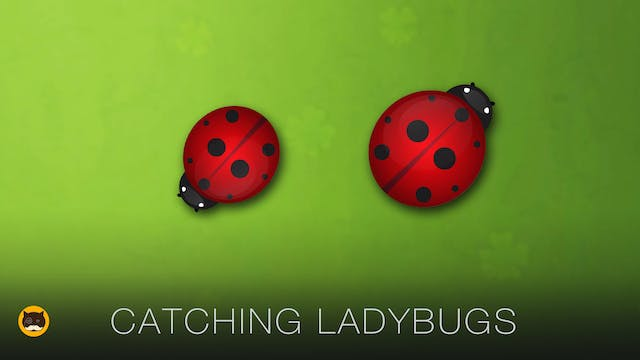 Games for Cats to Watch - Ladybugs