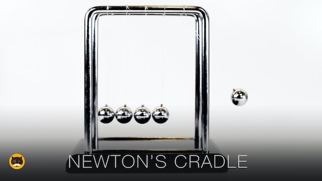 VIDEO FOR CATS TO WATCH - Newton's Cradle