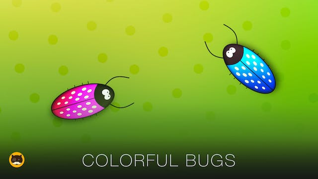 Video for Cats Bugs - Colorful Bugs