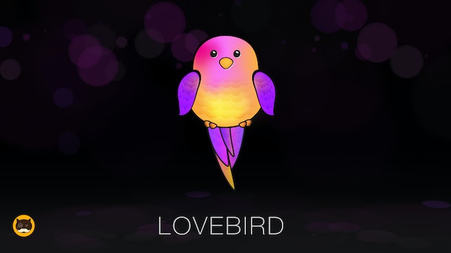 Cat Games - Lovebird. Video for Cats ...